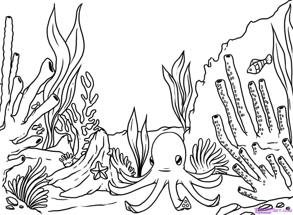 Coral Sea Color Sheet - Worksheet & Coloring Pages