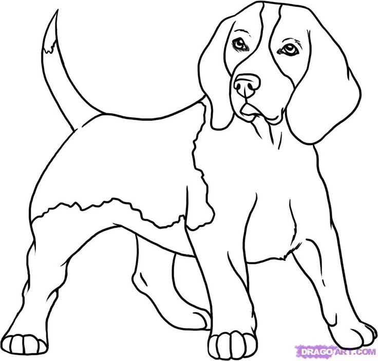 Beagle Dog Coloring Book