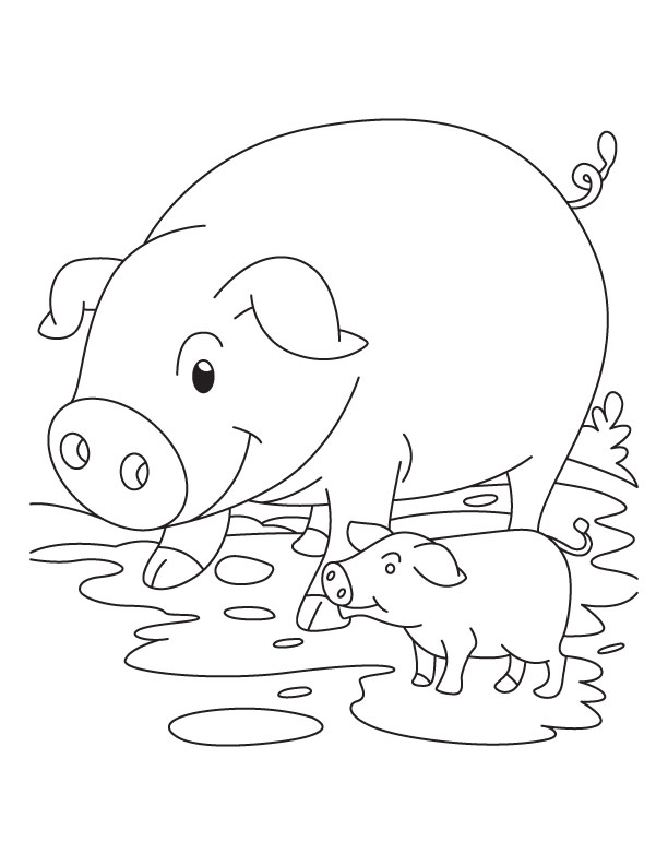 free pig coloring pages - photo#31