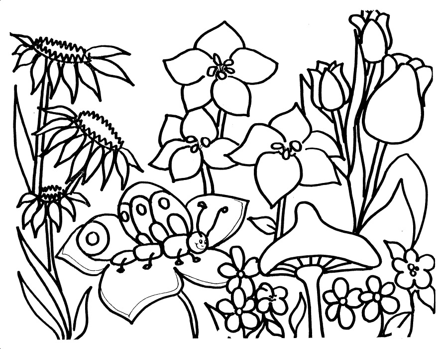 easy coloring pages of flowers - flower garden coloring pages to download and print for free