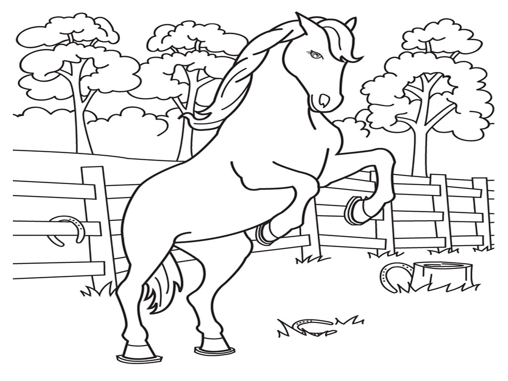barbie and horse coloring pages - Horse Color Pages