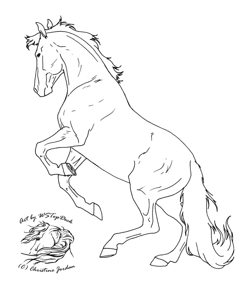 Palomino horse coloring pages download and print for free for Breyer coloring pages