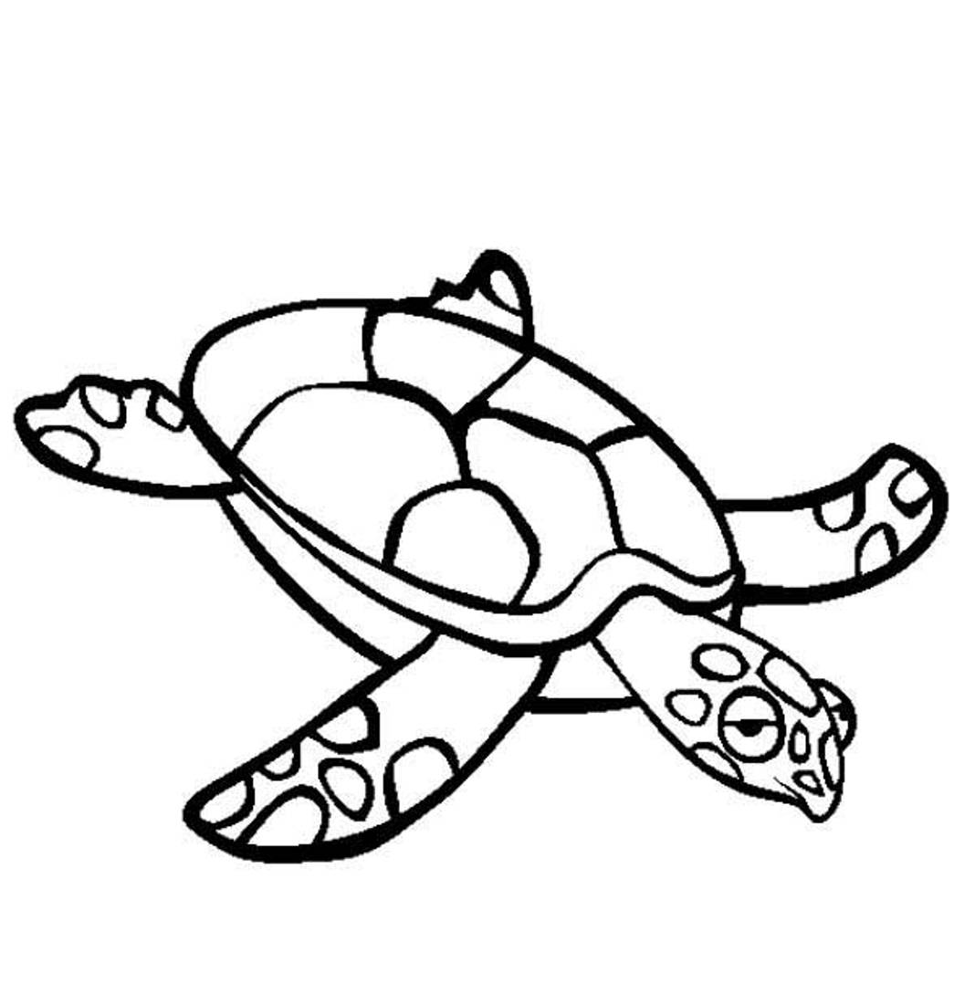Sea turtle coloring pages to download and print for free