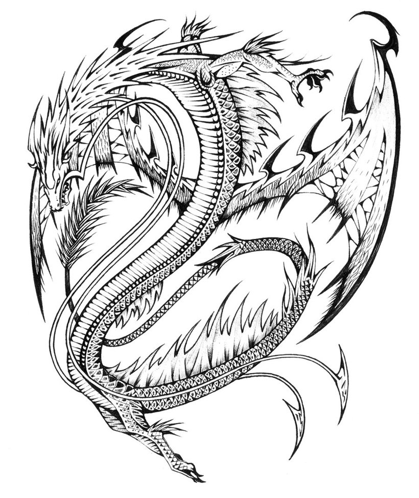dragon coloring pages for adults to download and print for free