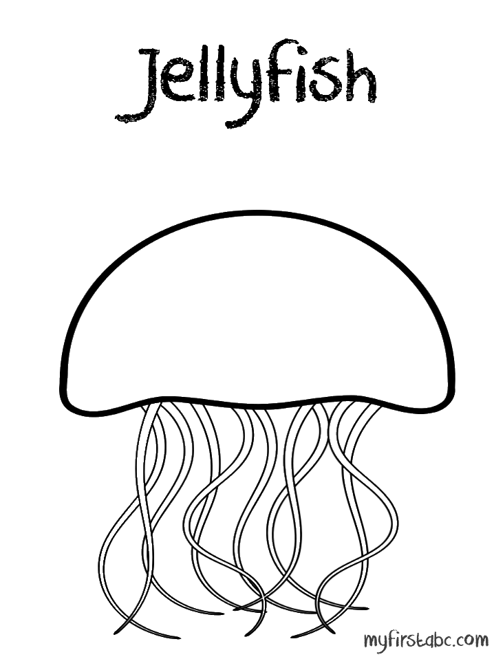Jellyfish coloring pages to download