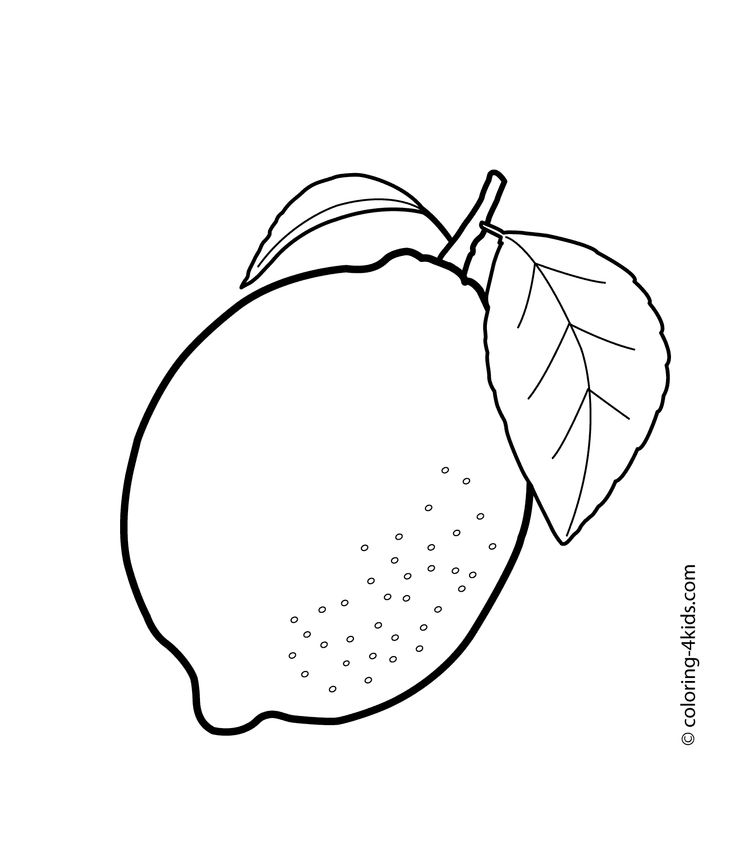 This is a graphic of Universal Lemon Coloring Page
