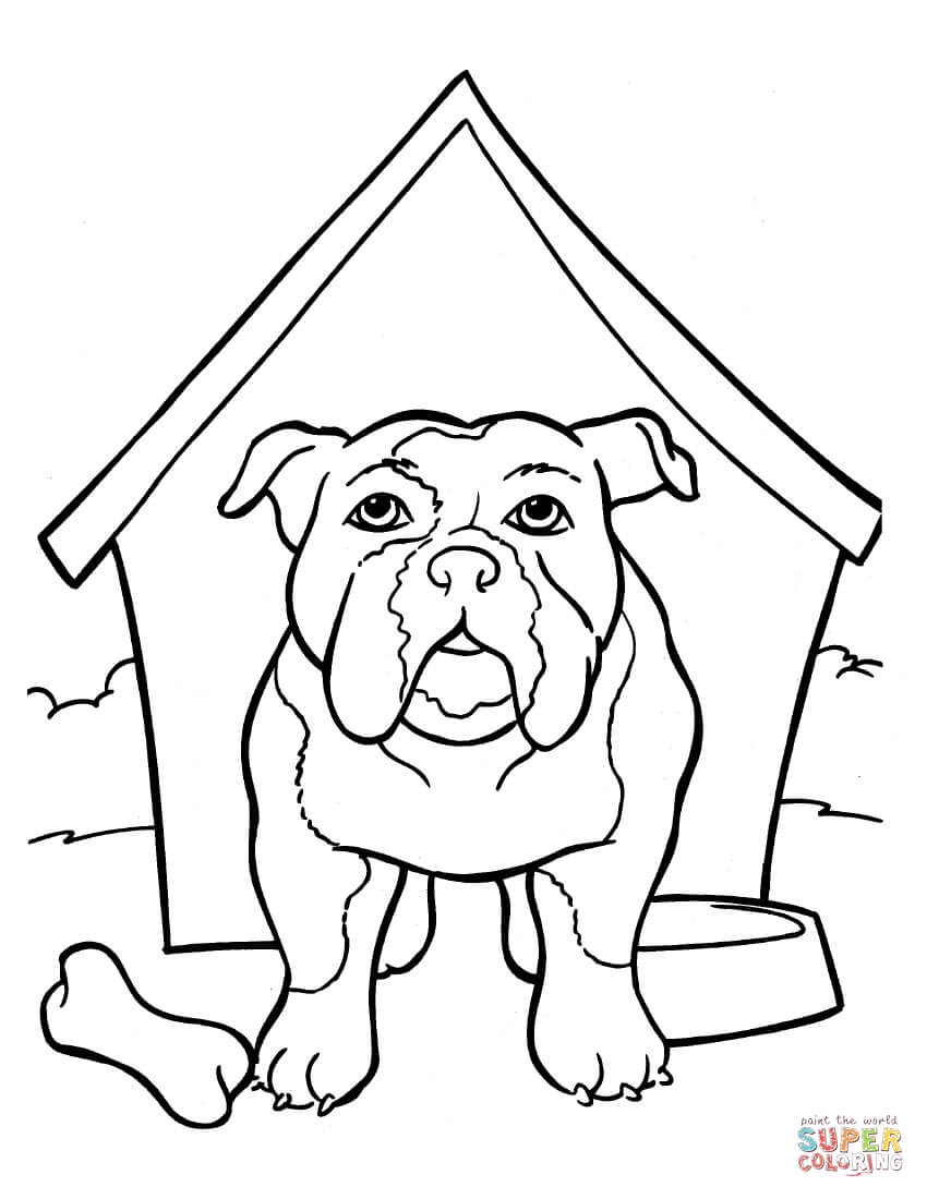 Bulldog coloring pages to download