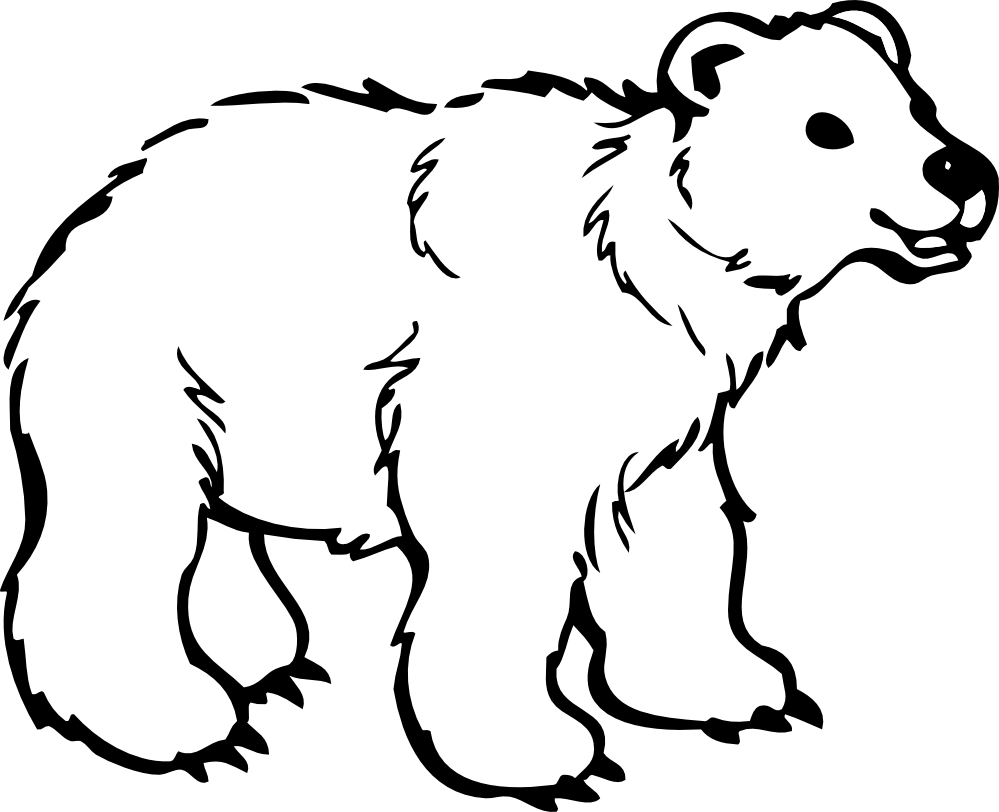 Coloring Pages Bear Color Pages bear coloring pages to download and print for free pages