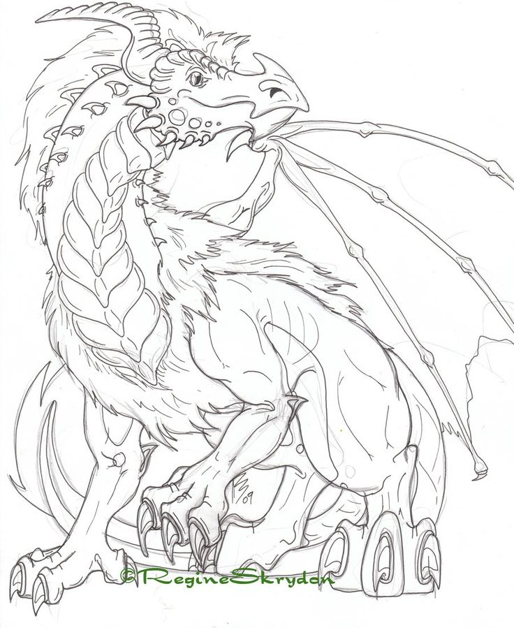 Dragon Coloring Pages For Adults To Download And Print For Free - Printable-coloring-pages-adults