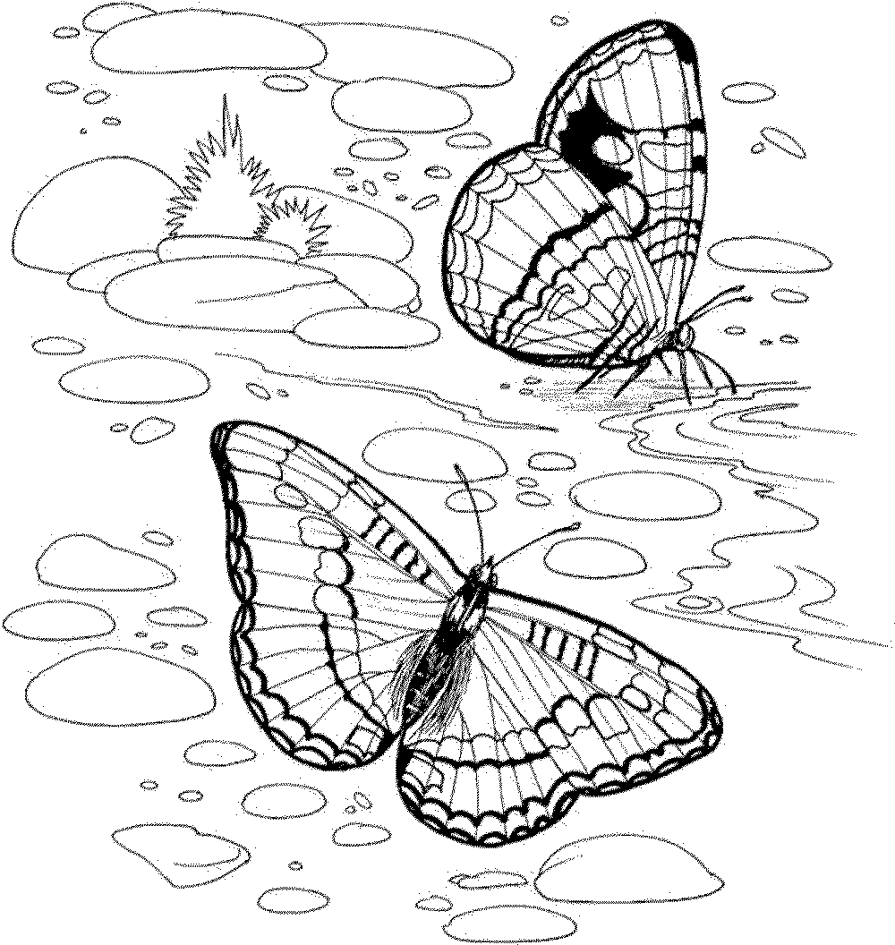 nature coloring pages print - photo#6
