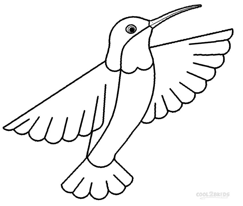 Pigeon Coloring Page To Print Out: Hummingbird Coloring Pages To Download And Print For Free