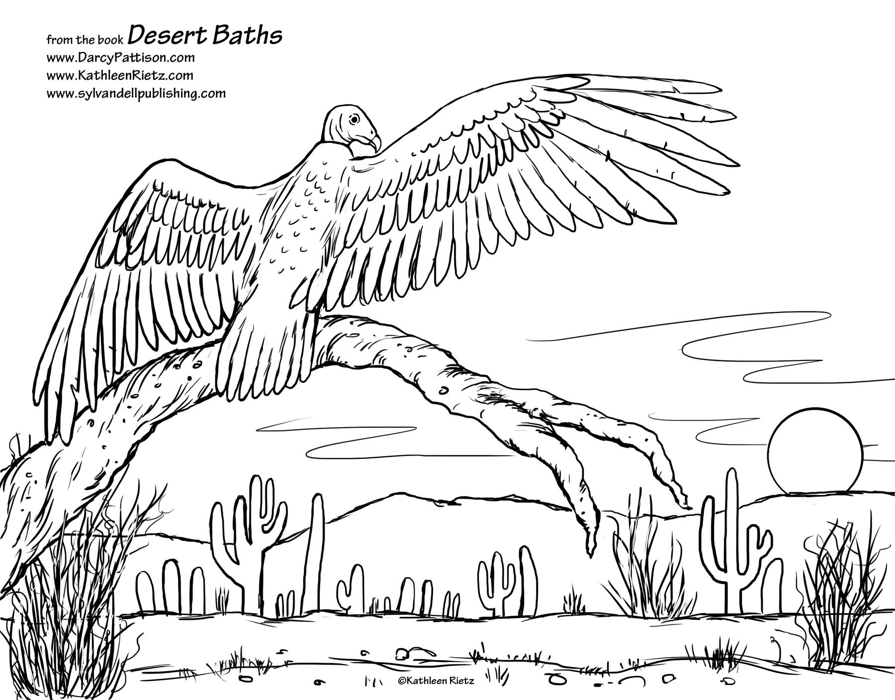 Colouring Desert Animals : Desert coloring pages to download and print for free