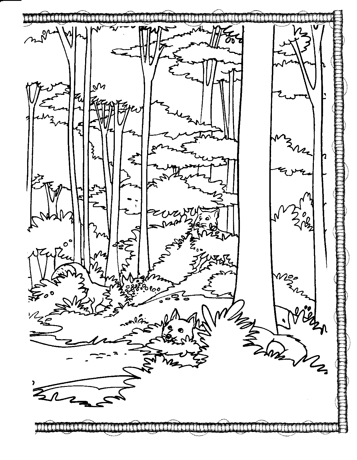 Forest coloring pages to download