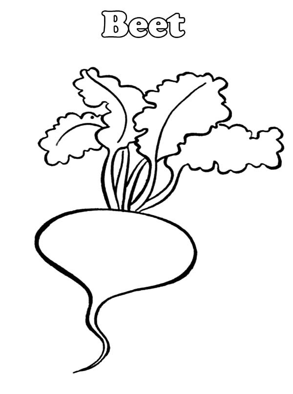 Beetroot coloring pages download