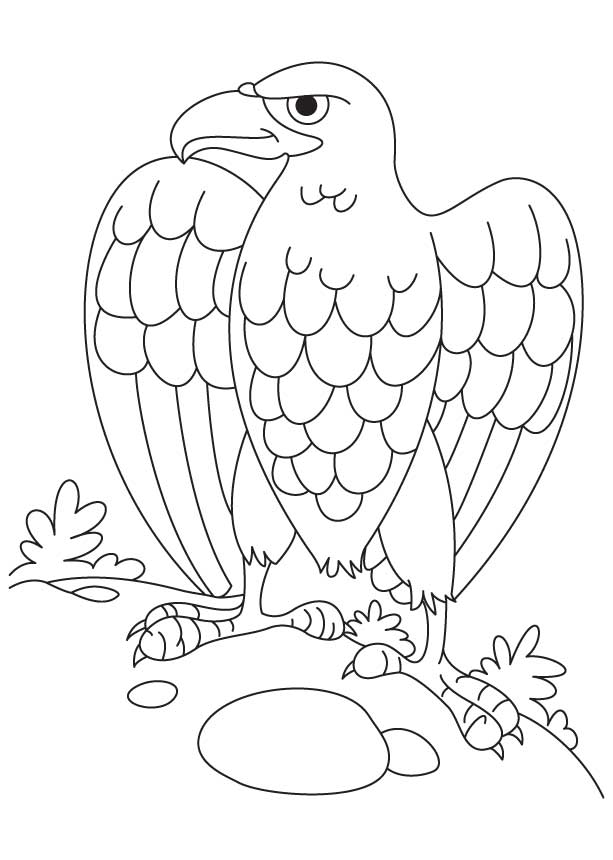 Bald eagle coloring pages download and print for free