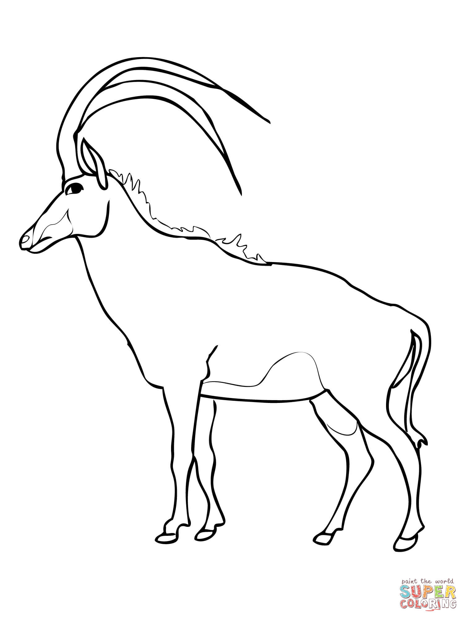 Springbok coloring pages download