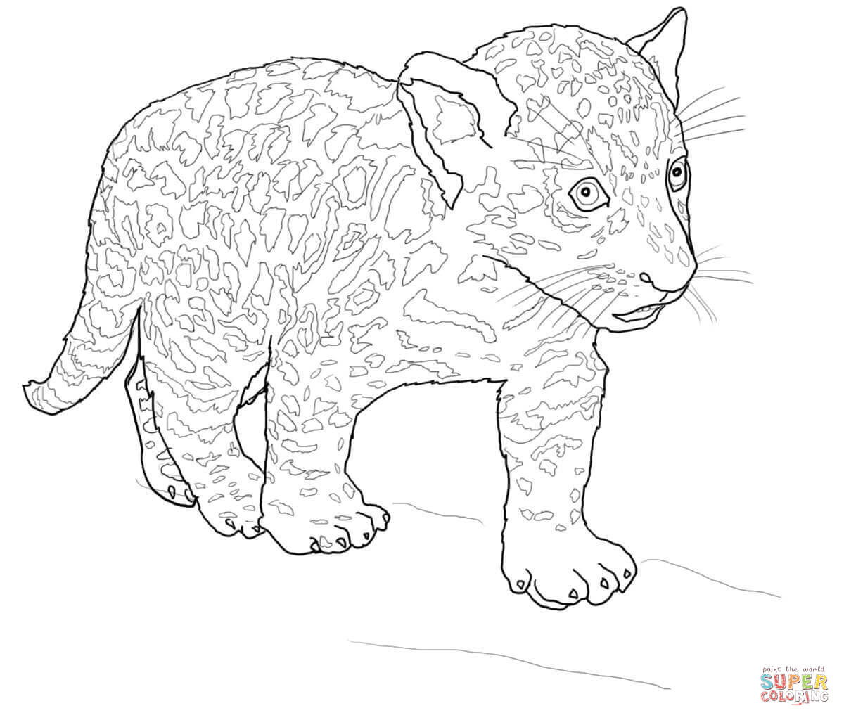 Jaguar coloring pages to download