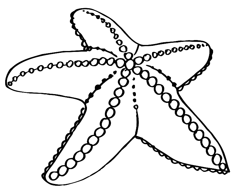 Starfish Coloring Page Free | Coloring Page
