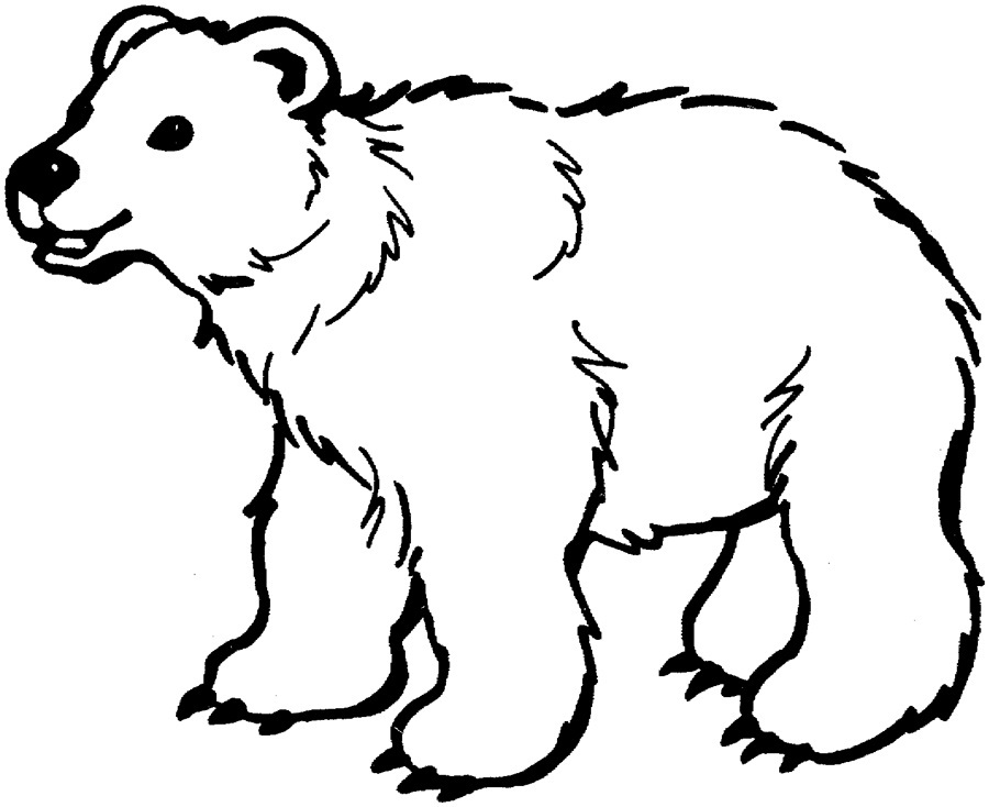 free coloring pages little bear - photo#32