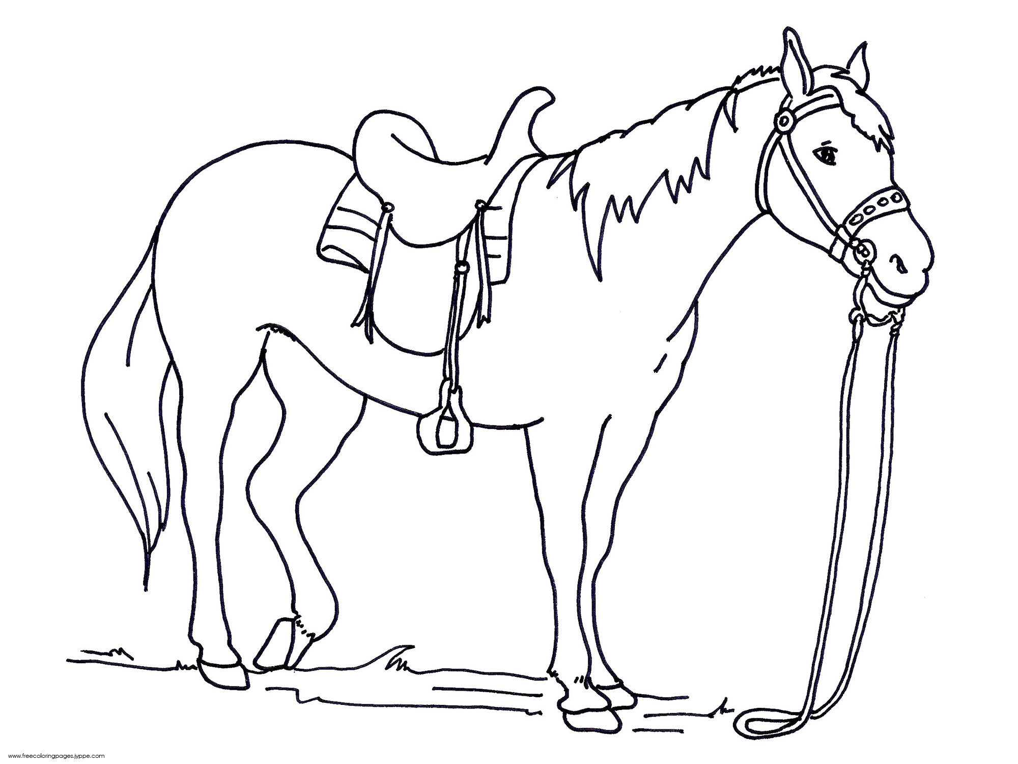 realistic horse coloring pages online - photo#3