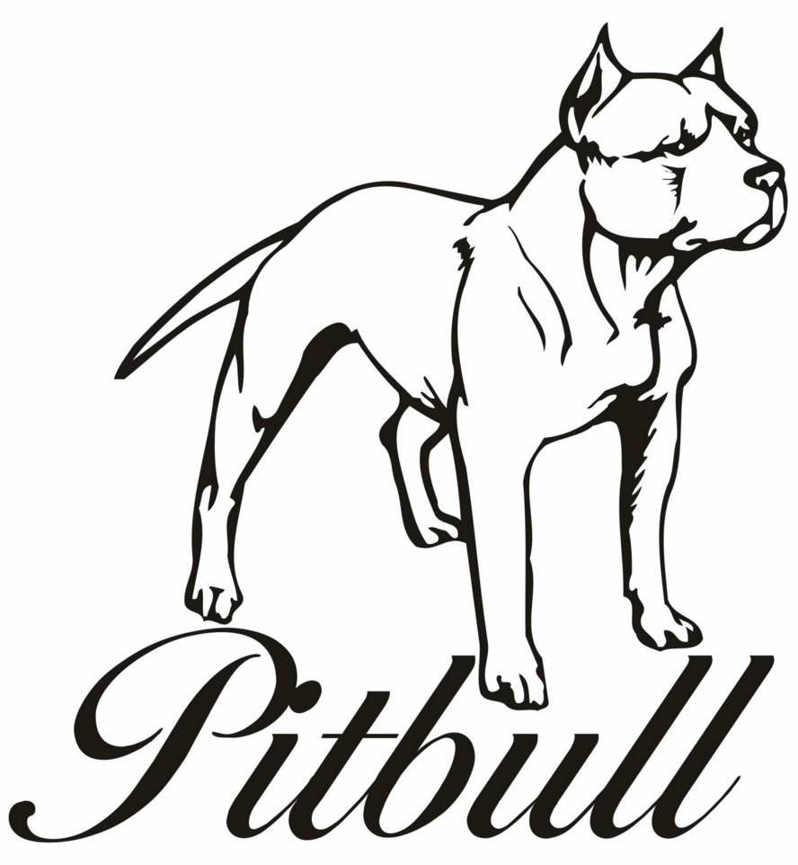 pitbull coloring pages - Pitbull Coloring Pages
