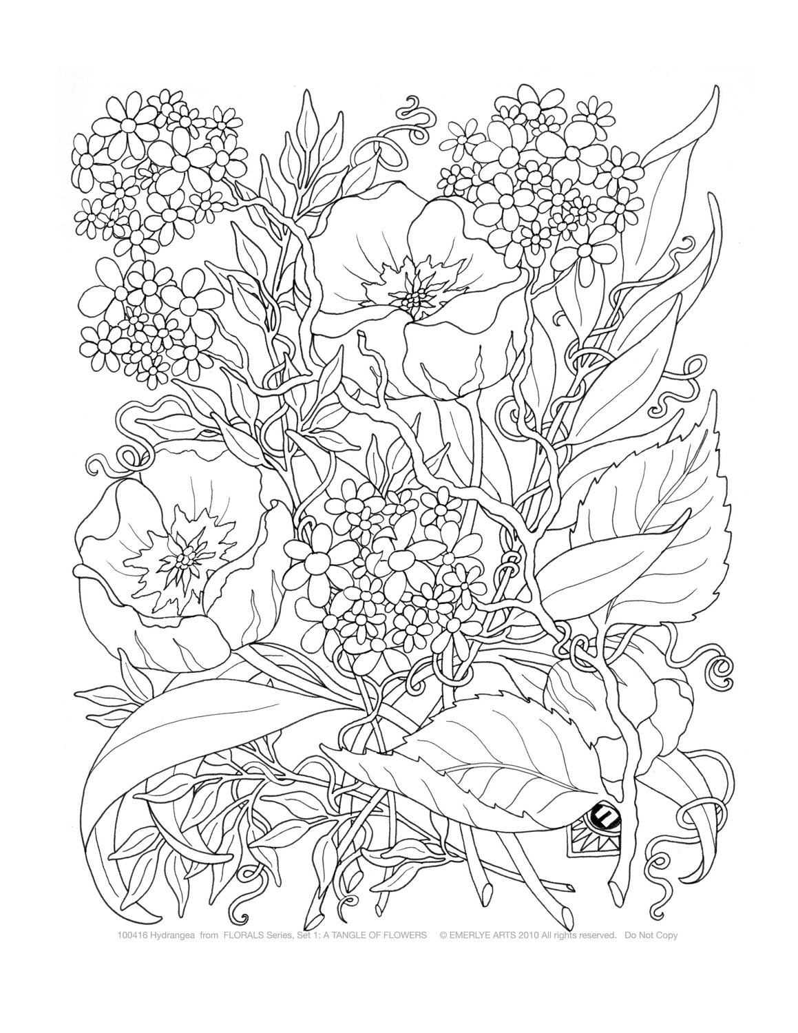 Detailed colouring pages for adults - Detailed Flower Coloring Pages