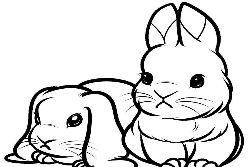 realistic baby bunny coloring pages - photo#31