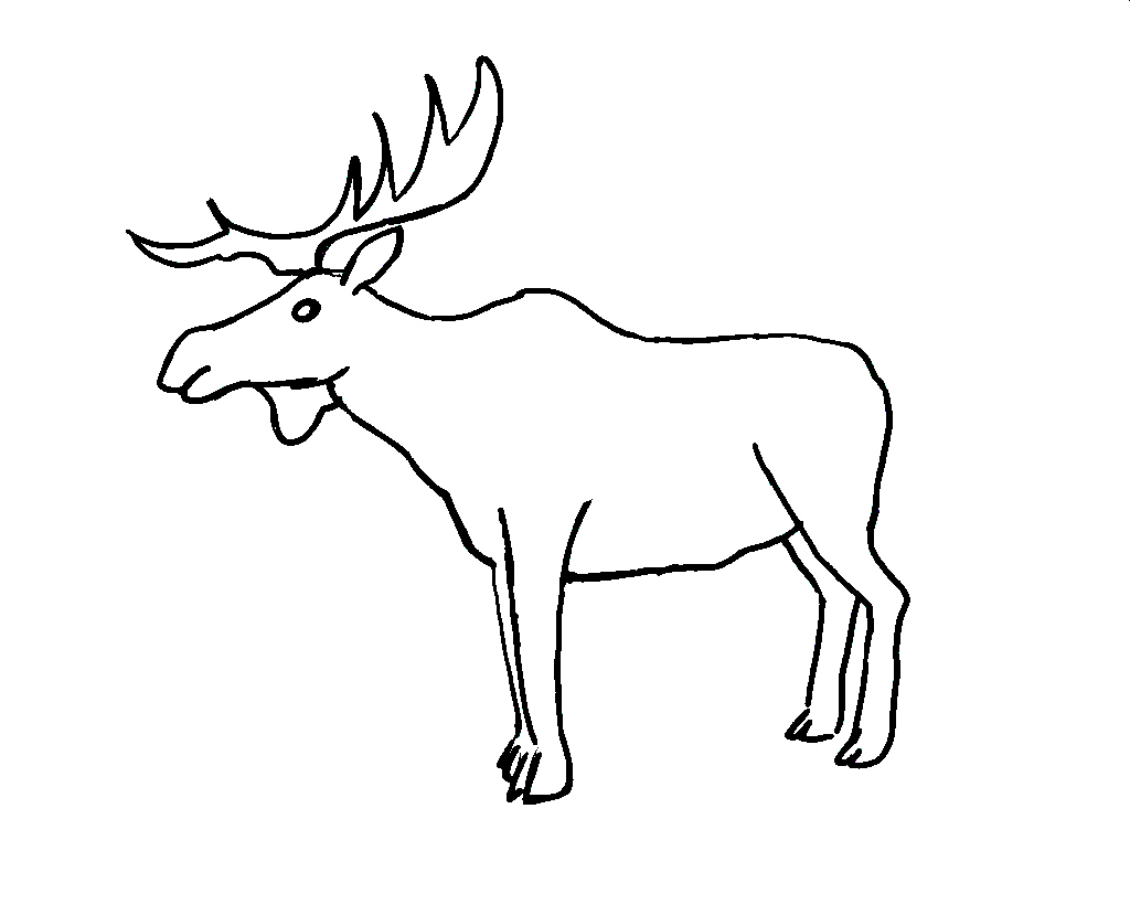 Free coloring pages elk - Bull Elk Coloring Pages