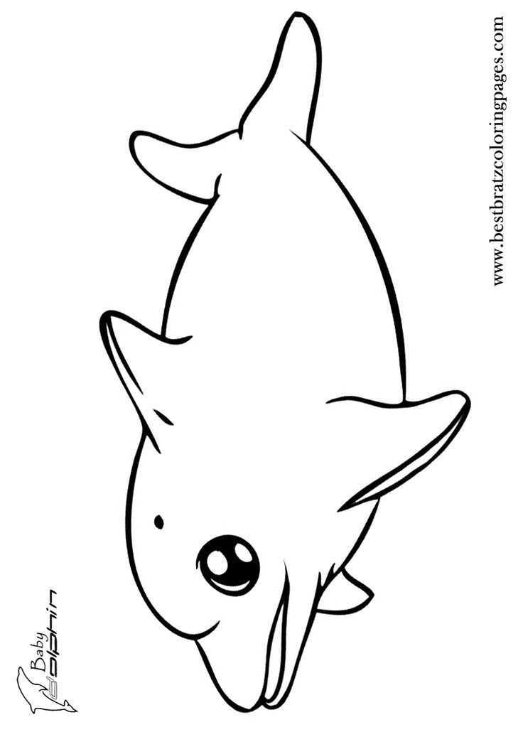 http://coloringtop.com/sites/default/files/16_1301.jpg Dolphins