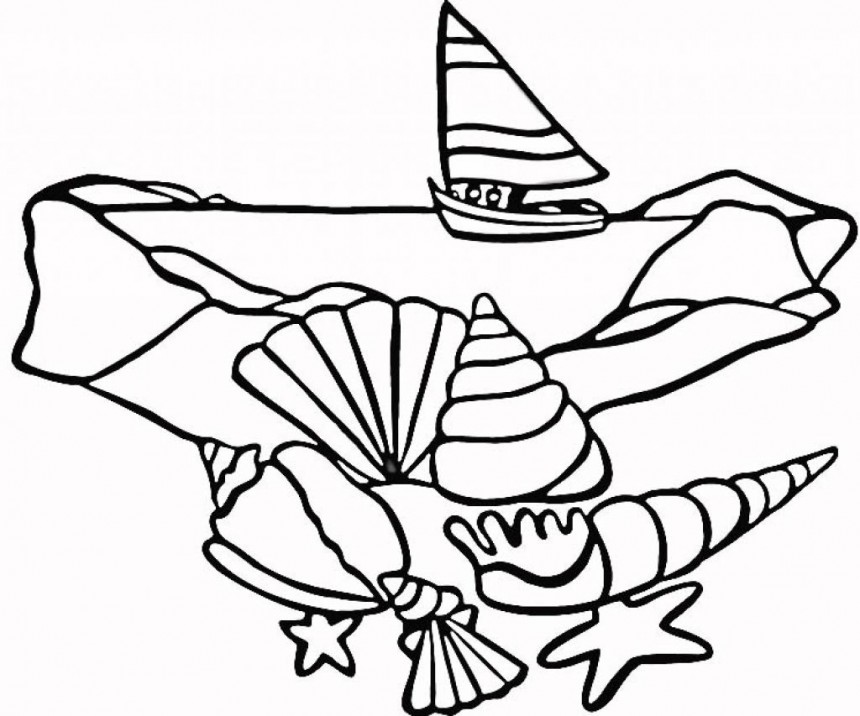 seashell coloring pages - Seashell Coloring Pages Printable