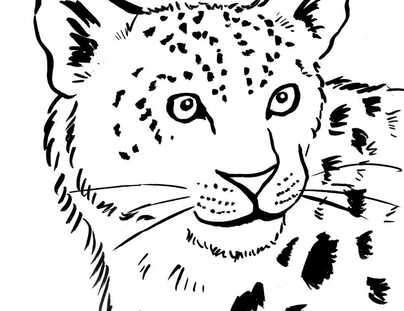 Leopard Coloring Pages To Download And Print For Free Free Snow Leopard Coloring Pages To Print