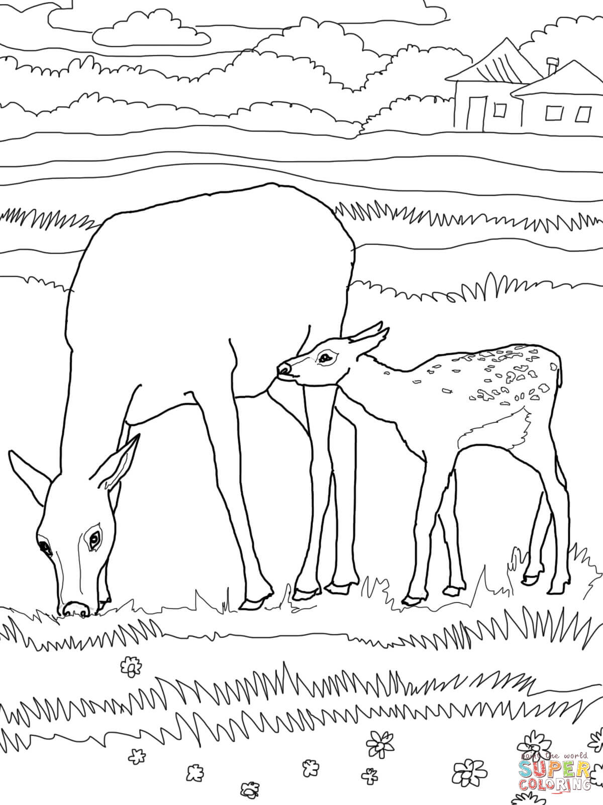 Bull elk coloring pages download
