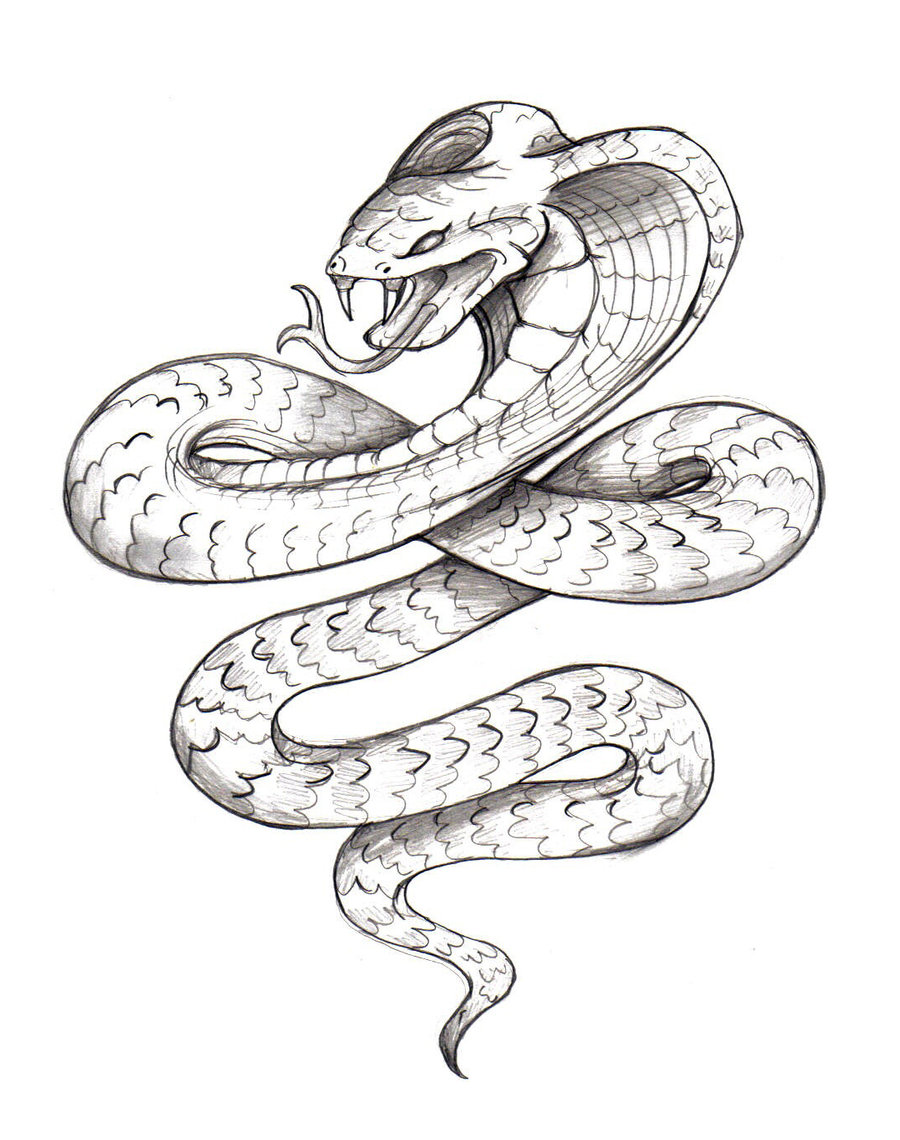 Free coloring pages king cobra - King Cobra Snake Coloring Pages