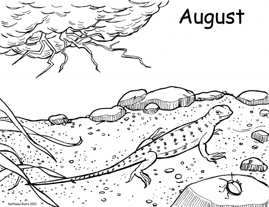 Lizard coloring pages to download and print for free