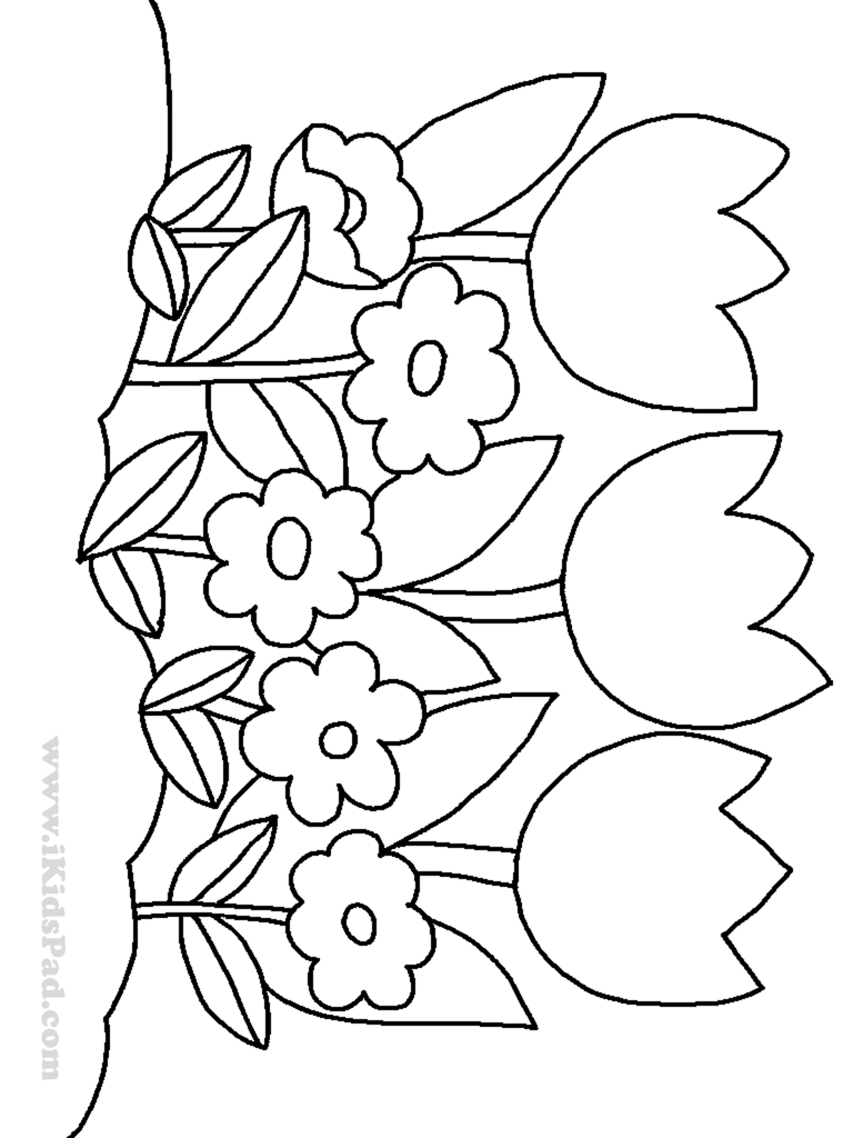 Free Colouring Pages Flowers Plant coloring pages to download and print for free