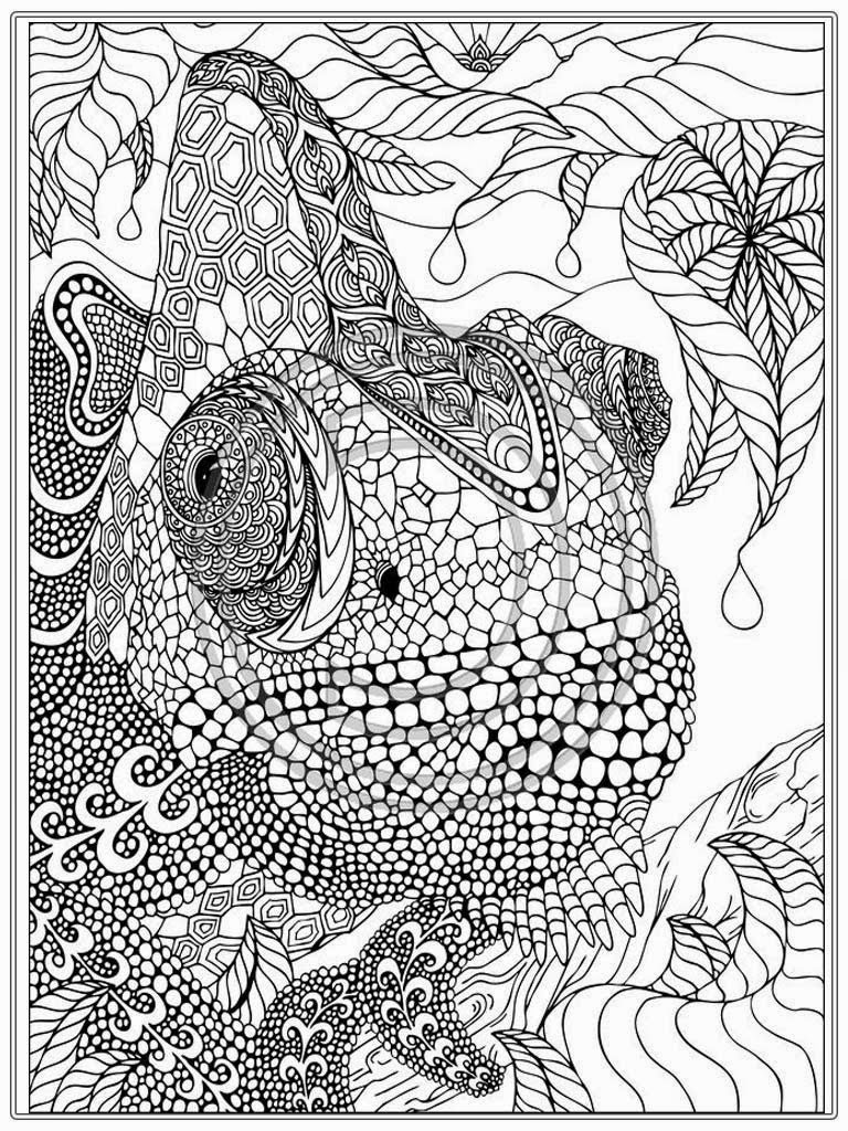 Adult coloring pages to print to