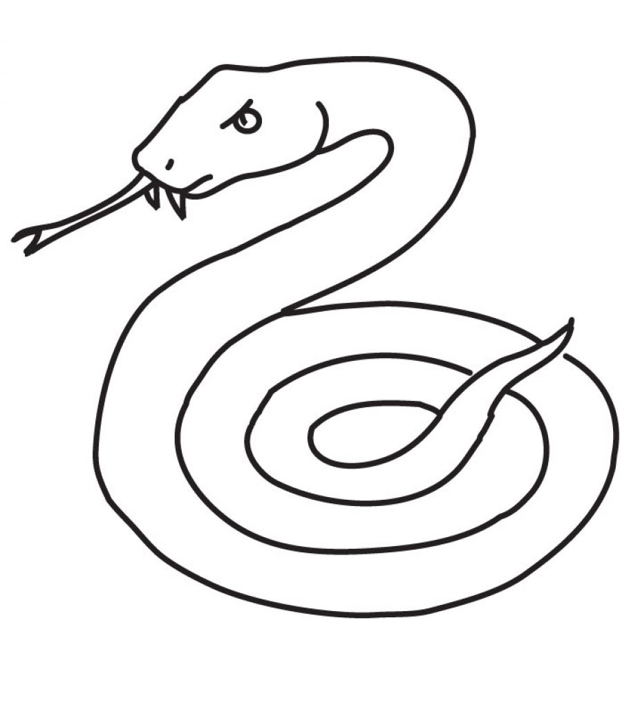 Snake coloring pages to download and print for free