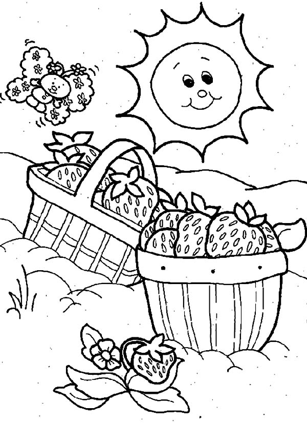 It's just a photo of Tactueux Picnic Coloring Page