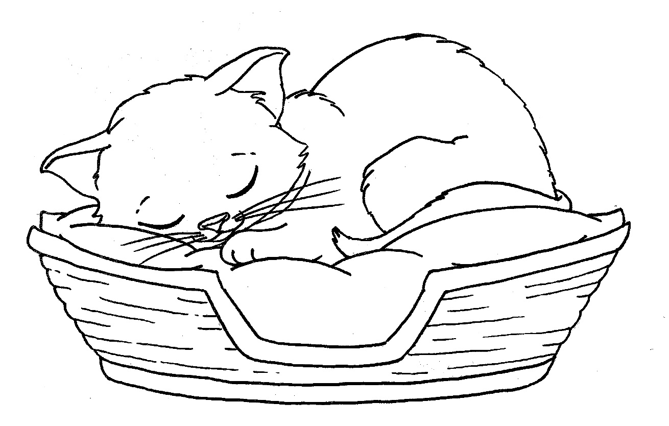 Kitten coloring pages to download and print for free for Cat color pages