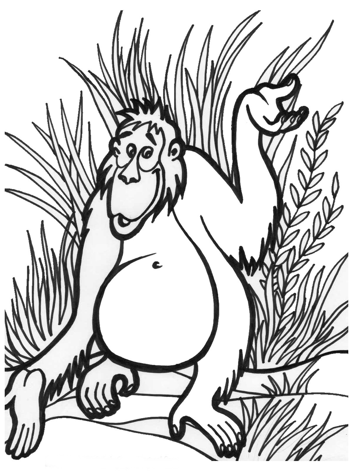 Jungle book coloring pages online - Jungle Animal Coloring Pages