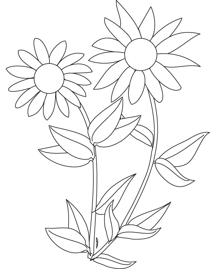 It's just a photo of Gratifying Coloring Pages Sunflowers