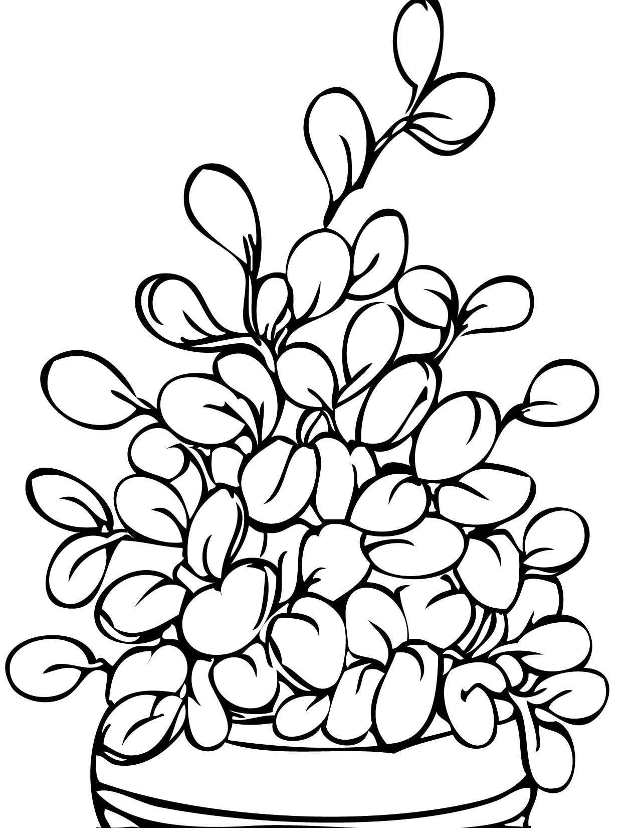 Plant coloring pages to download and print for free | 1275 x 1650 jpeg 239kB
