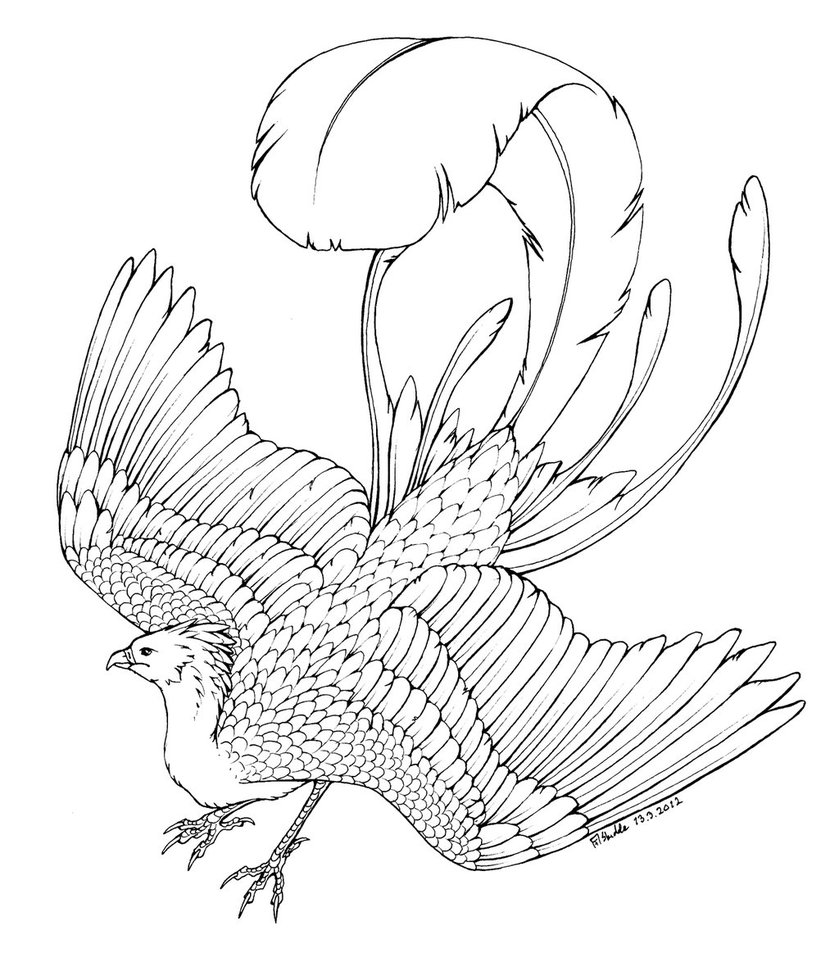 free firebird coloring pages - photo#22