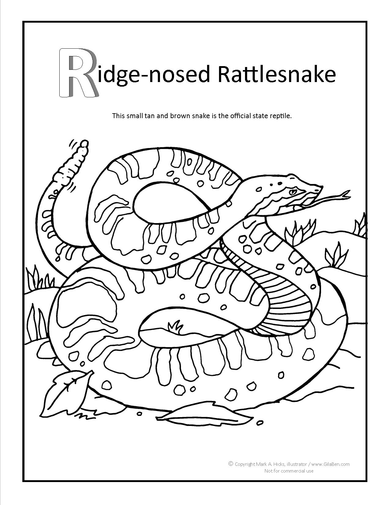 rattlesnakes coloring pages download and print for free