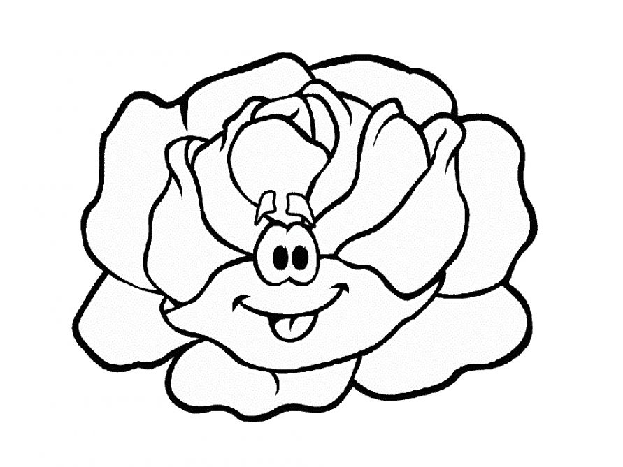 Cabbage coloring pages to download