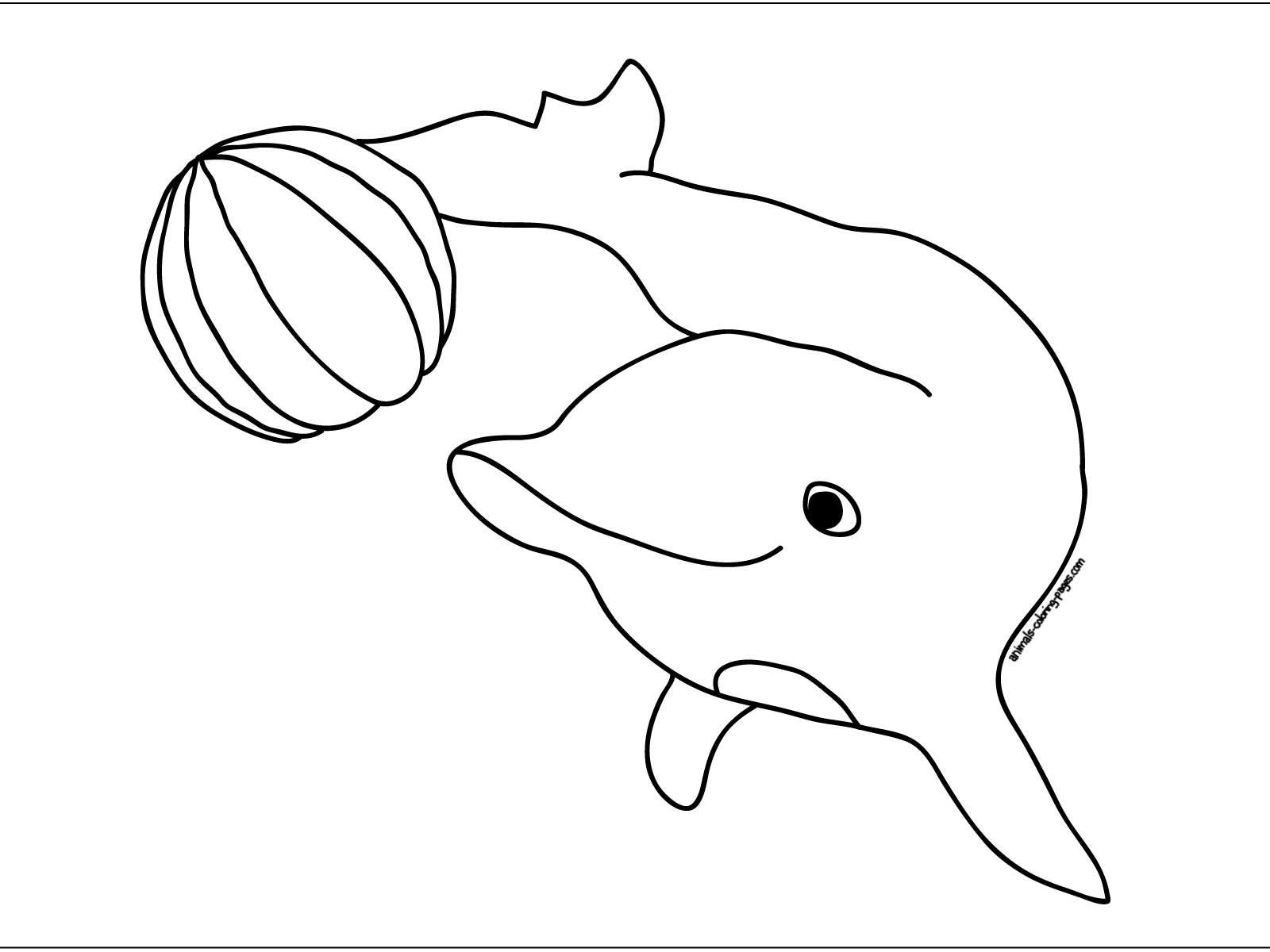 http://coloringtop.com/sites/default/files/2_1221.jpg Dolphins