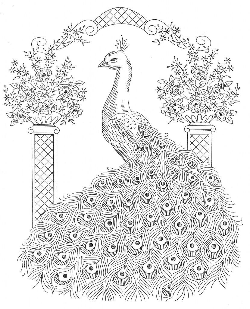 Peacocks coloring pages download
