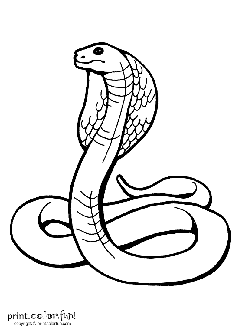 king cobra snake coloring pages download and print for free