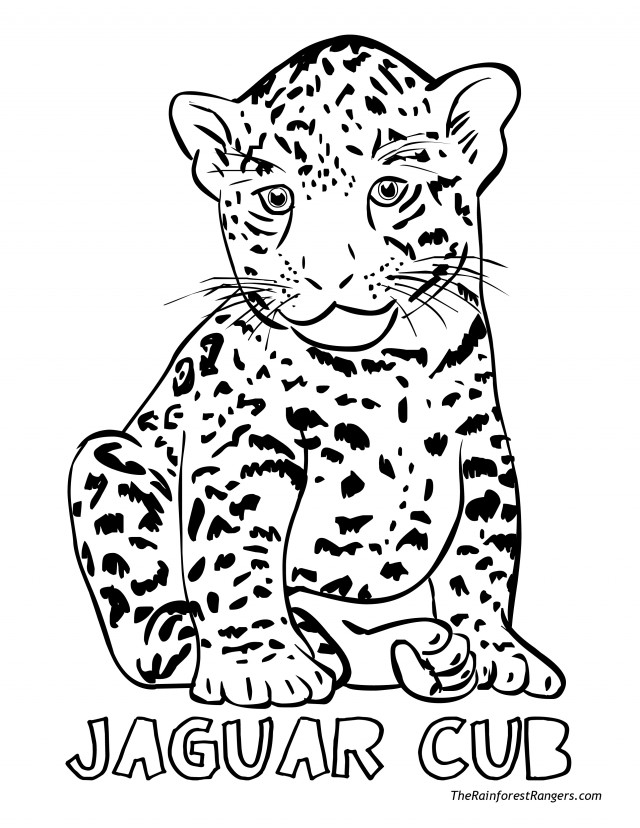 coloring pages jaguars - photo#29