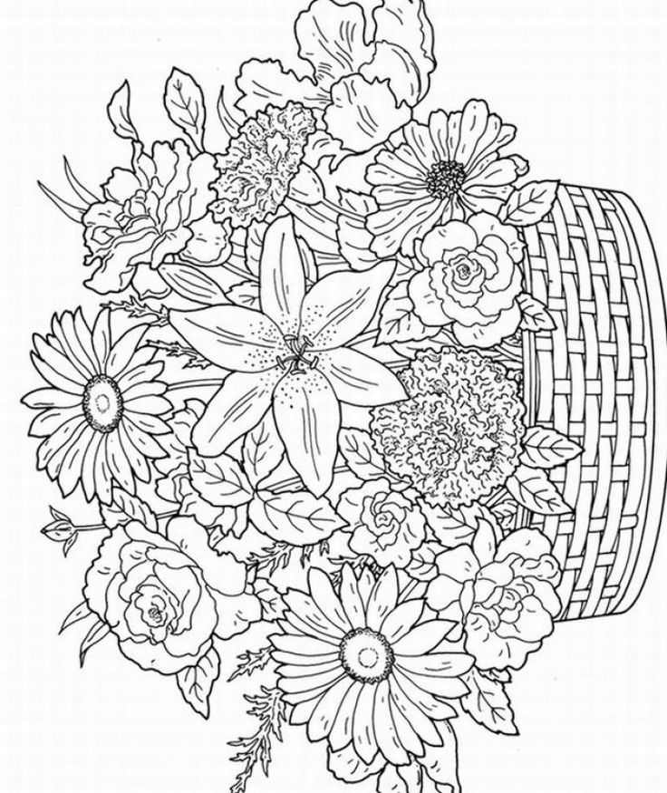 Adult coloring pages flowers to